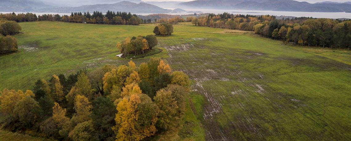 Offentlig ettersyn – Forslag til Beitebruksplan 2021-2025